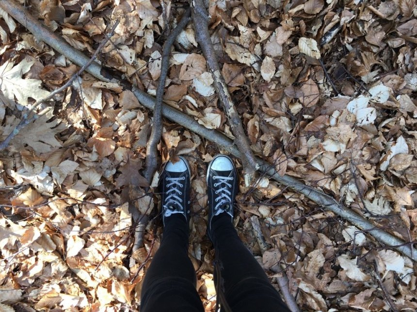Bergwaldprojekt Amrum - Feet on Leafs  | GreenMe Berlin on the road