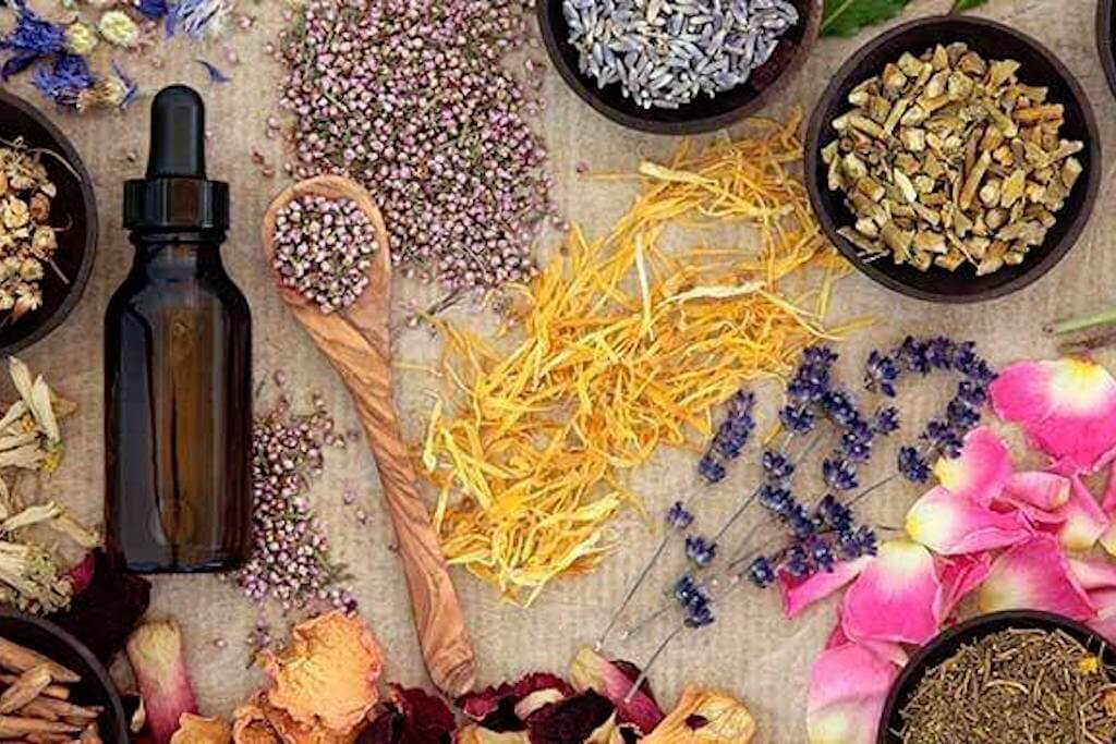 Edible Alchemy, HerbalTinctures workshop | GreenMe Berlin Podcast Ep15