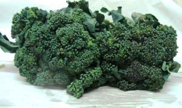 brocolis 2
