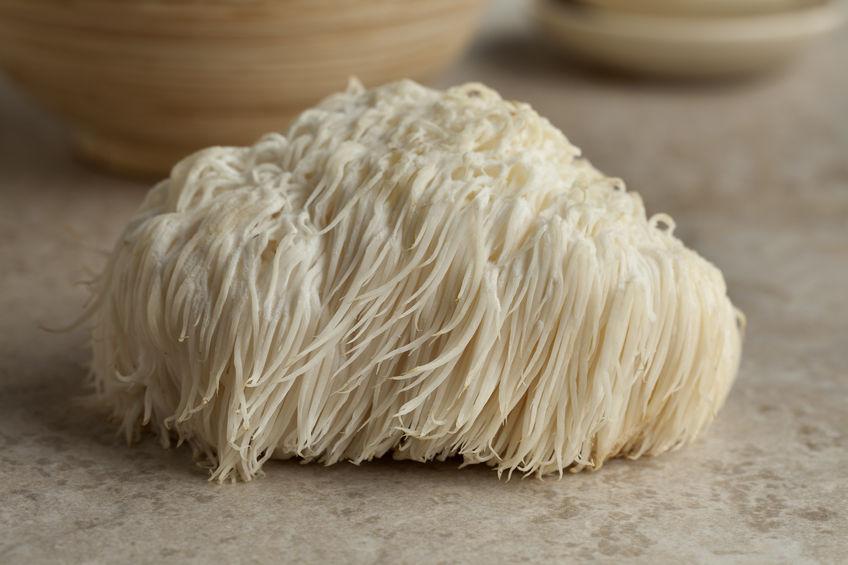 Image result for lion's mane mushroom