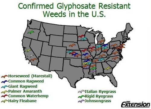 Confirmed Glyphosate Resistant Weeds in U.S.