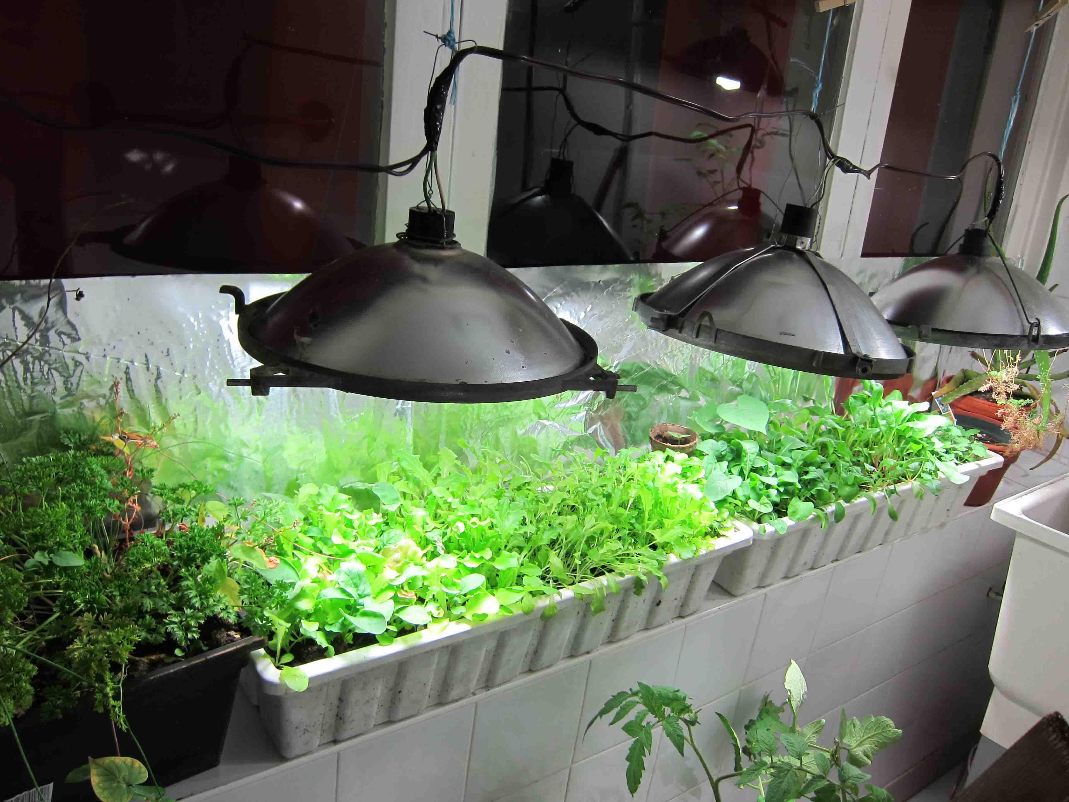 Flourscent Light Fixtures