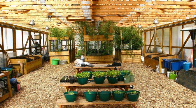 Rid-All Green Partnership…… Growing food, creating jobs