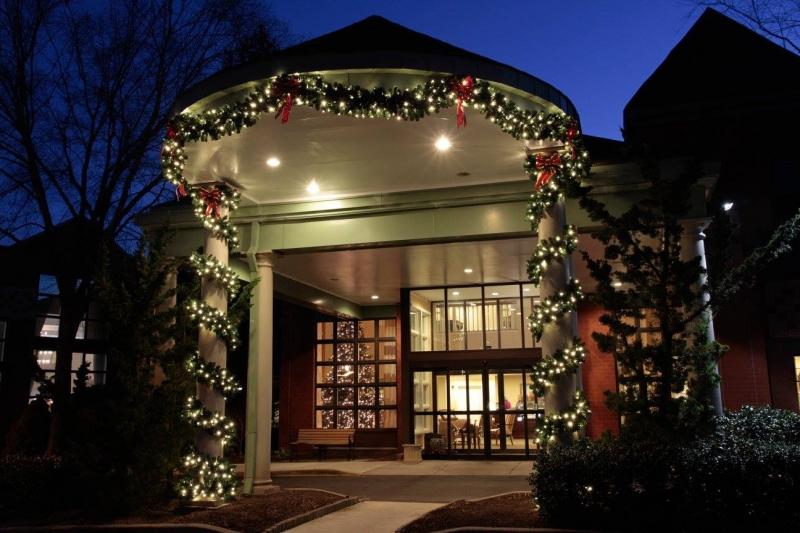 christmas lighting green oasis