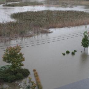 Hurricane Sandy, Landscape Redesigner