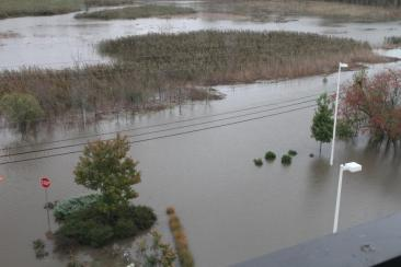 View of the flooded road from my room. You can hardly make out the difference between the marsh and the road.