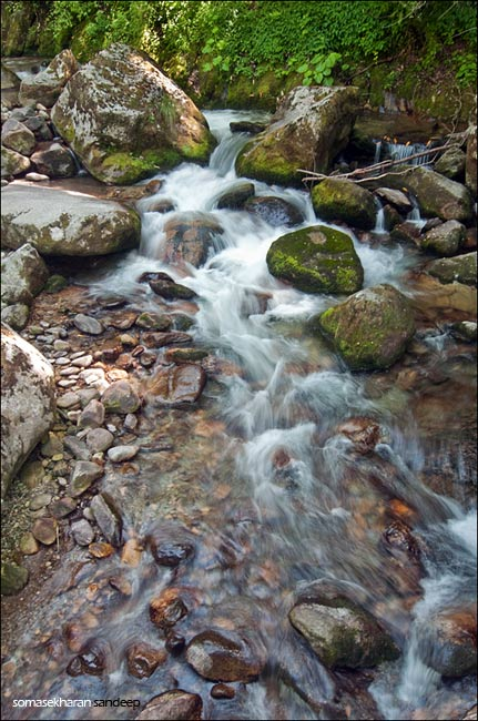 The forest stream where we drank from and rested after the insane descent from Jogni to Lapa