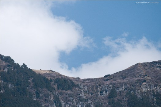 And that is Jogni from Lapa, through a telephoto lens