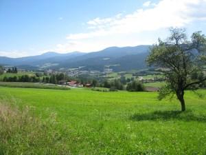 Bavarian_Forest