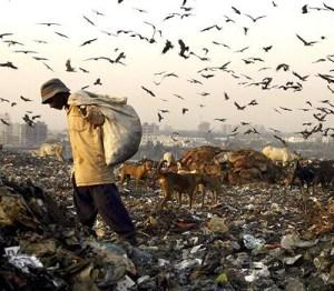 India_Municipal_Waste