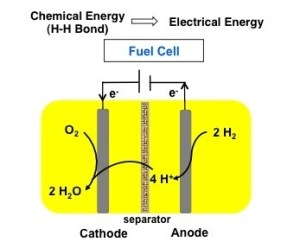 fuel cell catalyst