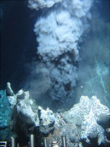 Deep-Sea Thermal Vent, Home of Chemosynthetic Bacteria Pyrococcus Furiosus
