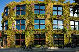 green-walls-could-save-energy-museum-paris_65557_600x450
