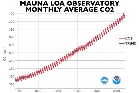 Carbon Dioxide Measurements Over the Last Fifty Years