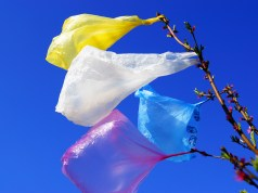 No More Plastic Bags in Chicago