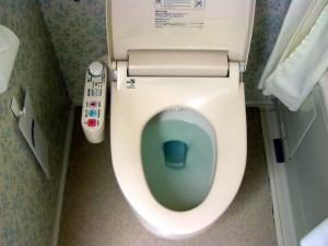 Japanese Western Toilet
