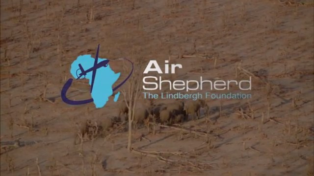 Air Shepherd drones could save endangered species from poacher's bullets.