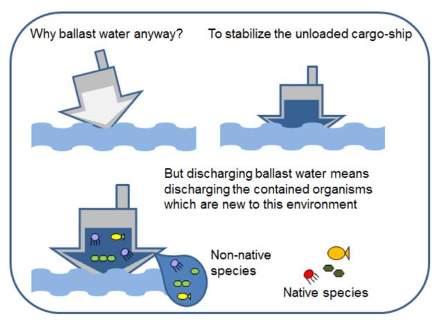 Ballast water image