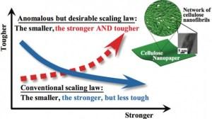 cellulose_nanopaper-590x330