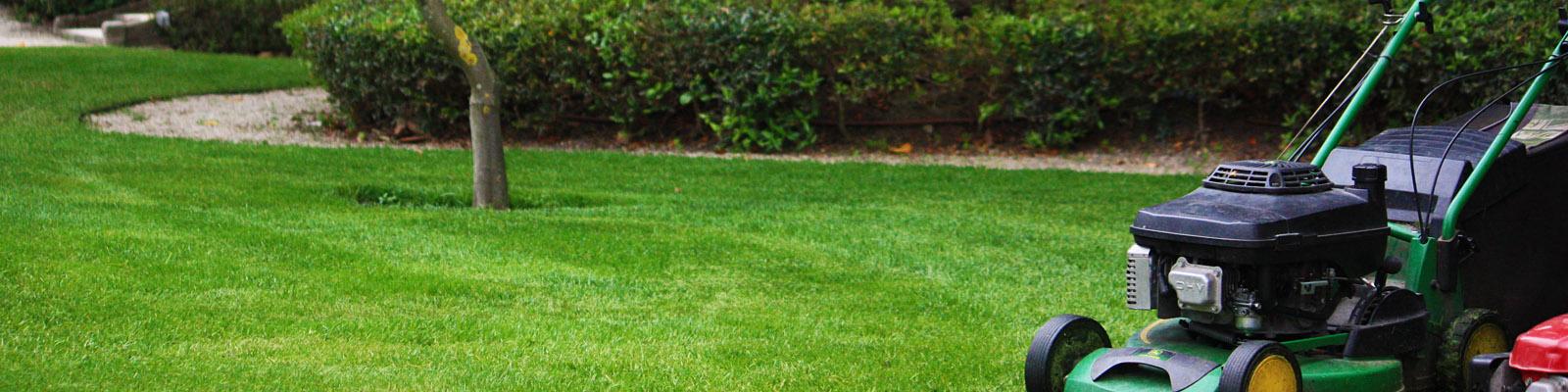 Green Parrot Gardens | Garden Maintenance