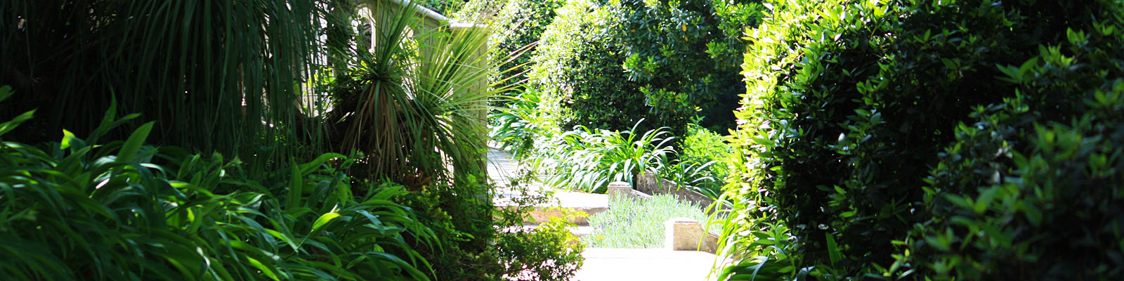 Green Parrot Gardens | Blog | Garden Investments
