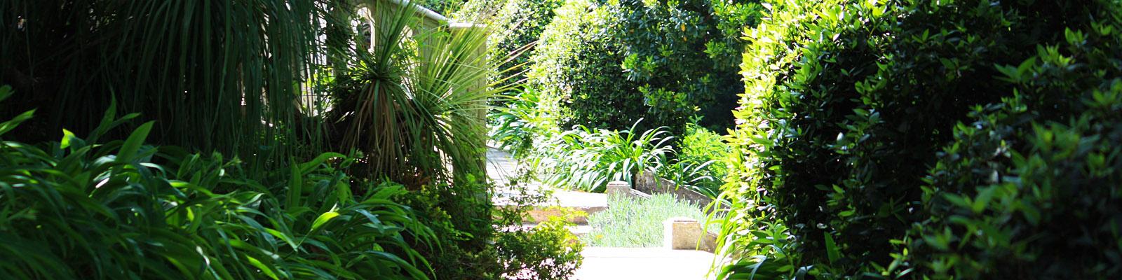 Green Parrot Gardens | Blog | Garden Investments