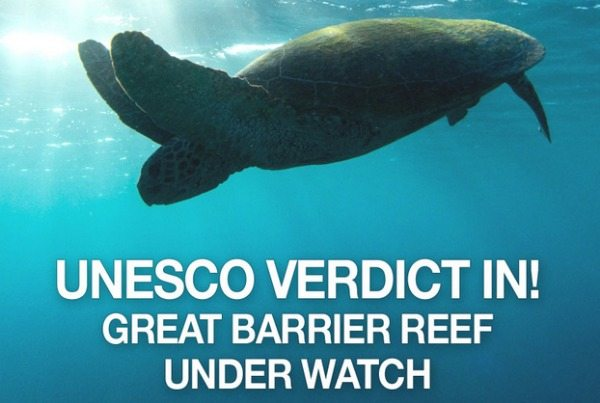 UNESCO has made their call on the status of the Great Barrier Reef