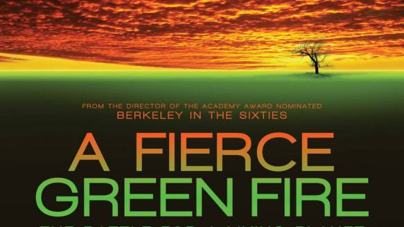 Image result for a fierce green fire