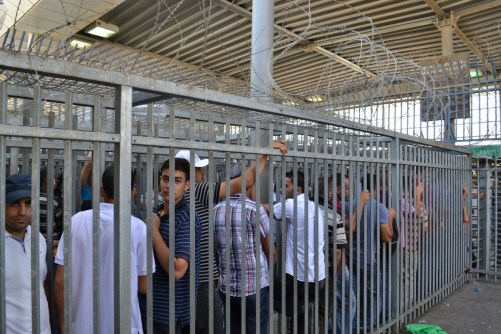 Cattle shute, Qalandia checkpoint (David Kattenburg)