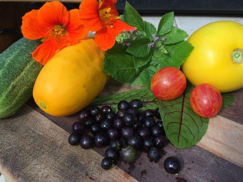 Home grown, organic produce from Didsbury, Alberta (Diana Daunheimer)