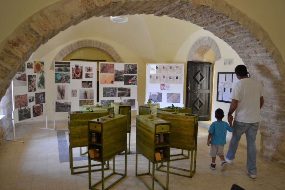Battir's new heirloom seed library, Landscape Ecomuseum (David Kattenburg)