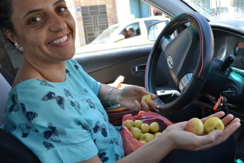 Vivien Sansour shows off heirloom Palestinian apricots (David Kattenburg)