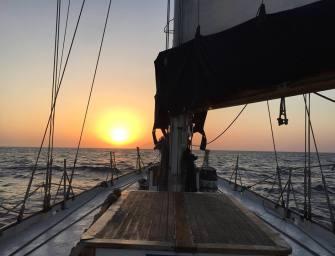 Gaza Voyage Interrupted