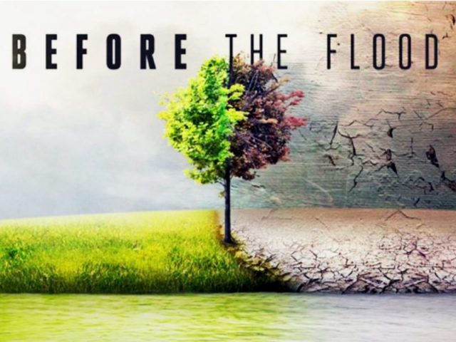 before the flood - raggio verde