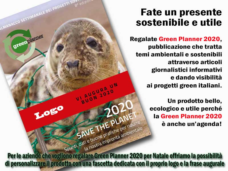 regalare green planner 2020