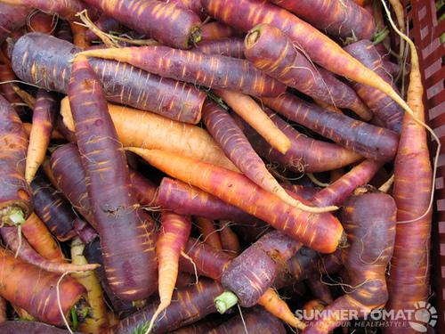 carrots colors originating in
