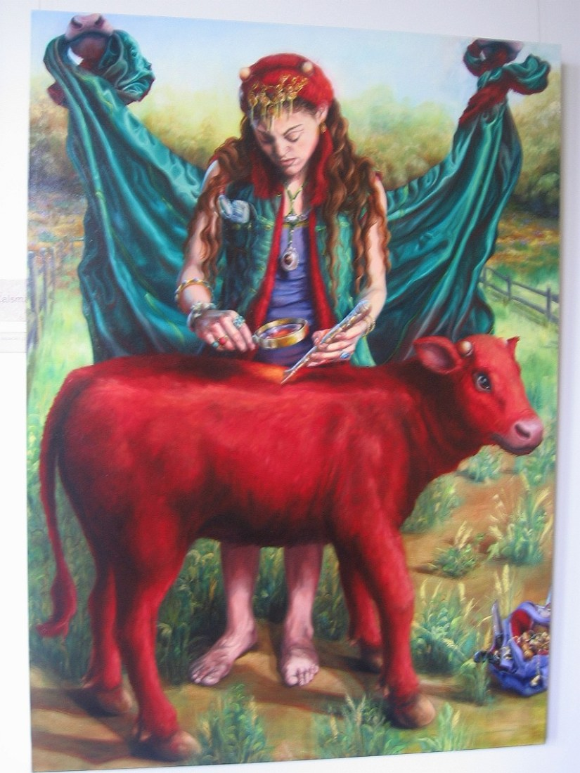 Image result for red heifer breeding program
