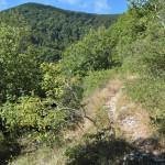 Sentiero 4 - Discesa