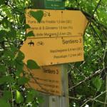 Sentiero 4 - Incrocio Sentiero 3