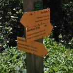 Sentiero 5 - Incrocio Sentiero 5bis