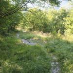 Sentiero 233 - Discesa a Serra Piana