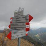 Sentiero 226 - Incrocio sentiero 239