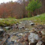 Pollino trek - Torrenti al Vacquarro