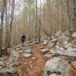 Pollino trek - Dal Gaudolino al Piano di Toscano