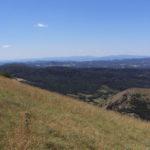 Monte Nerone - Prati a Nord