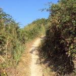Sentiero tra orti