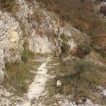 Sentiero 280 - Protezioni per Mtbikers