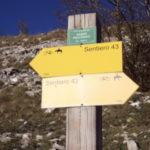 Sentiero 293 - Vecchi segnavia