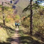 Sentiero 293 - Blanda discesa