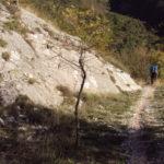 Sentiero 293 - Scendendo a Il Gengone